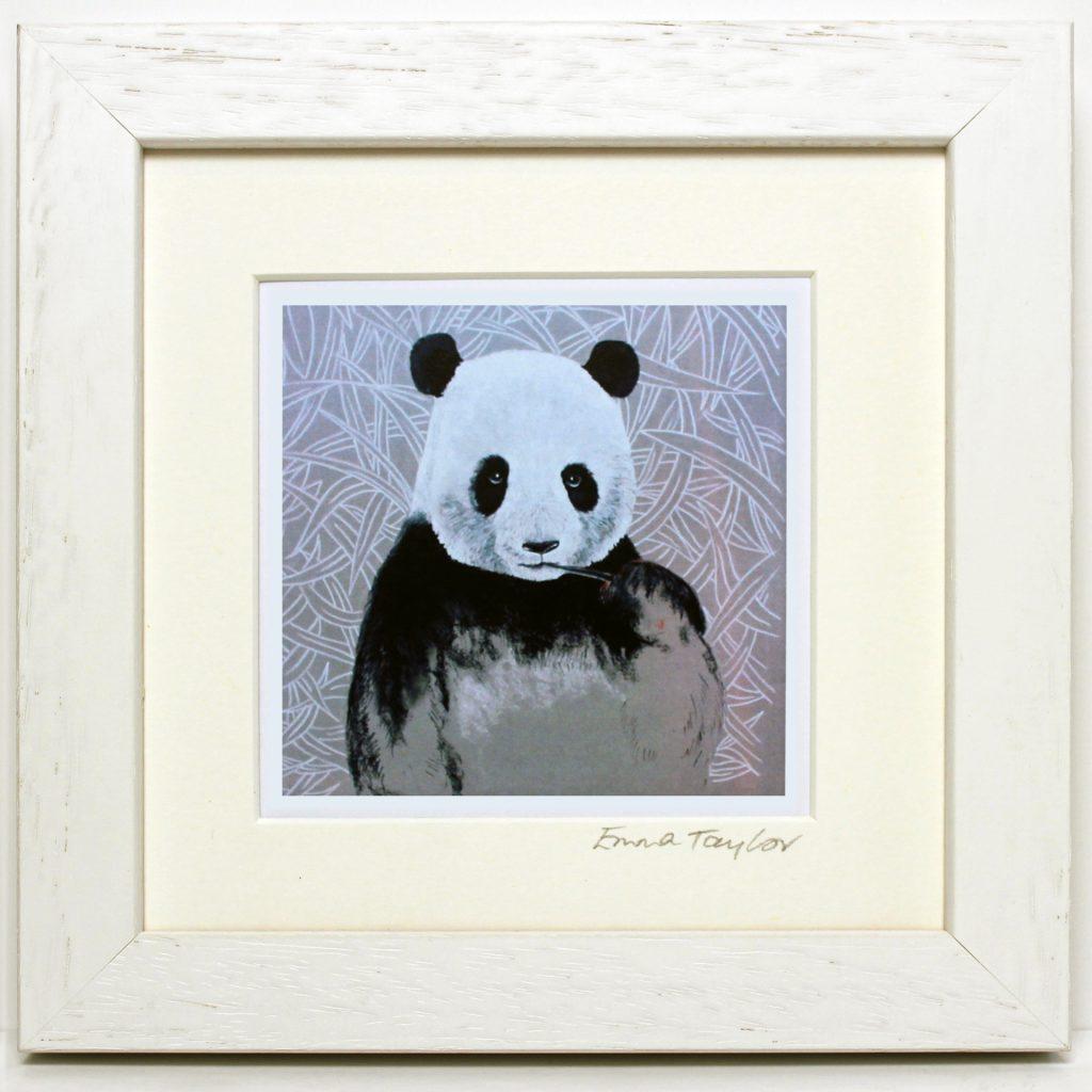 White frame panda